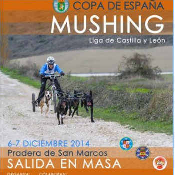 Mushing Ólvega 2014