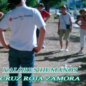 Valores Humanos 2013
