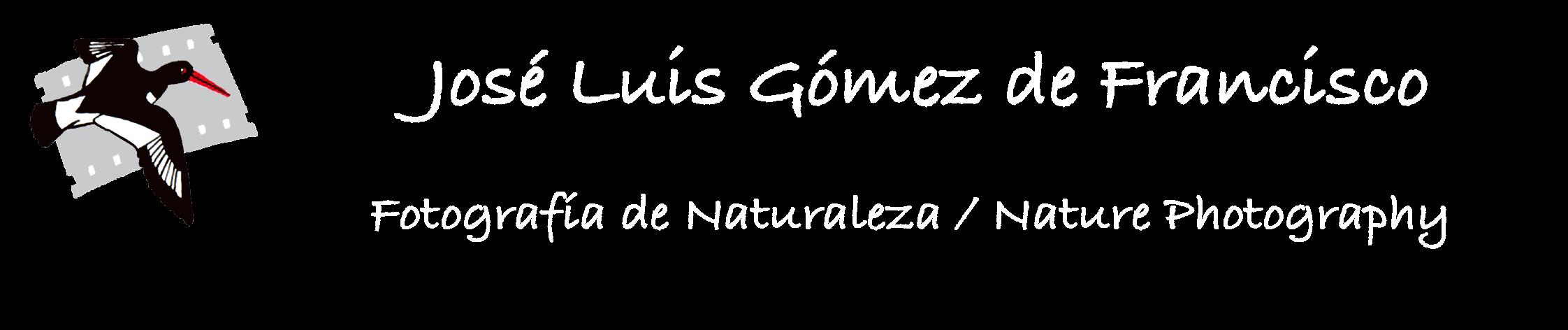 José Luis Gómez de Francisco - Fotografía de la Naturaleza / Nature photography