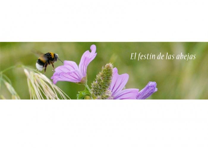 El festín de las abejas