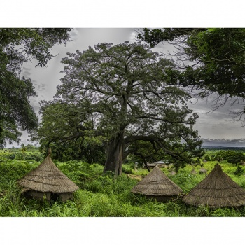 Montes Taneka.