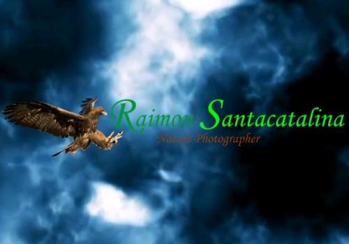 Raimon Santacatalina Nature Photographer (2018)