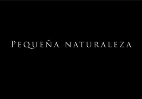Pequeña Naturaleza (2020)